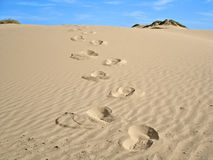 Walk in the Desert. Footprints scaling a sand dune in the desert Royalty Free Stock Image