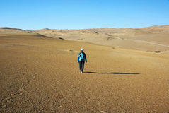 Walk in desert Stock Photos