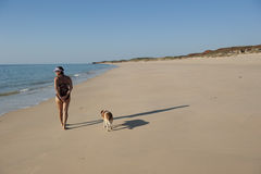 Walk the dog on the beach. A mature woman on holiday is enjoying a relaxed walk along the beach with her dog Stock Image