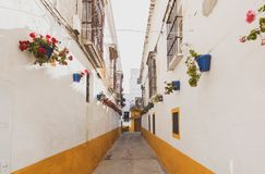 Walk with the dog by Sanlucar de Barrameda. Girl walking the dog through the old town of Sanlucar de Barrameda, in Cadiz. Very colorful street with colorful pots royalty free stock photos