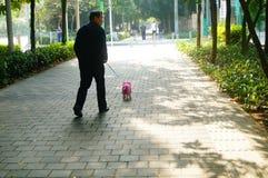 Walk the dog, on the sidewalk Stock Photos