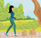 Walk the dogs in the park Stock Photos