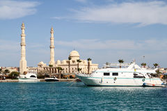 Walk from the Egyptian coasts. Voyage on the Red Sea coast in Egypt royalty free stock photos