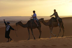 Walk in the ERG desert in Morocco. Erg Morocco Some tourists riding dromedaries for a walk in dawn Desert Erg Chebbi in Arabic: عرق الشبي is one of two Stock Photos