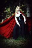 Walk into a fairy tale Royalty Free Stock Photos