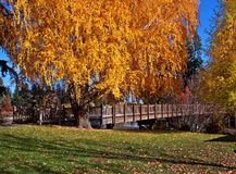 A Walk in the Fall. Footbridge over Mirror Pond - Deschutes River at Drake Park in Bend, OR stock photos