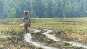 Walk in the field. stock footage