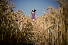 Walk in the field. Young beautiful girl walking down the road in a field Stock Photography