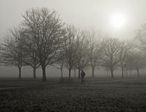 A walk in the fog Royalty Free Stock Images