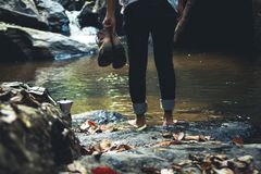 Walk in the forest Natural waterfall. Nature light Stock Photos