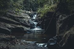 Walk in the forest Natural waterfall. Travel Stock Image