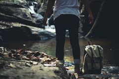 Walk in the forest Natural waterfall. Travel Royalty Free Stock Photo