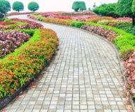 Walk in the garden Stock Photography