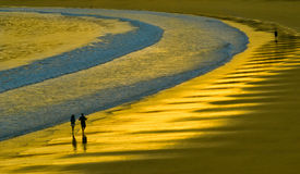 Walk on a gold beach Royalty Free Stock Photography