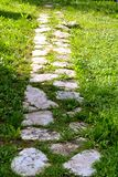 Walk on a green way. Stone path in green grass with sun and shade. Stone path in green grass with sun and shade, vertical frame, concept for walk, forward, road stock photography