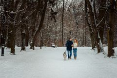 The walk of the happy loving couple with their siberian dog along the snowy path. Horizontal shot. Stock Images