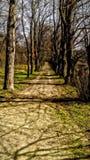Walk. Hdr landscape nature royalty free stock image