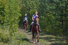 Walk on horseback. Stock Photography