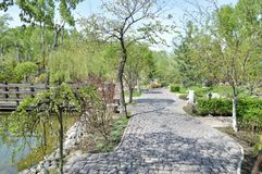 A walk on a hot summer day for a cool city Park. Alleys, benches and a pond. Stock Photo
