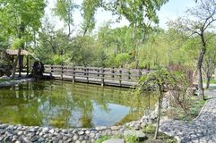 A walk on a hot summer day for a cool city Park. Alleys, benches and a pond. Royalty Free Stock Photography