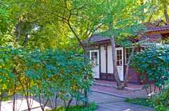 A walk on a hot summer day for a cool city Park. Alleys, benches. Russia, Siberia. stock photo