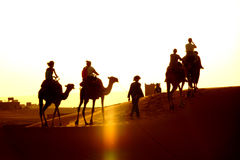 Free Walk In The ERG Desert In Morocco Royalty Free Stock Photo - 99036155