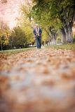 Walk in the leaves. Lone man talking a walk in the fall Royalty Free Stock Photography