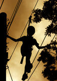 Walk of life. Child on a confidence course stock images