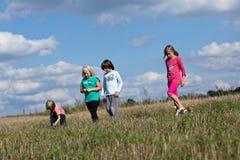 Walk through the meadow Stock Photo