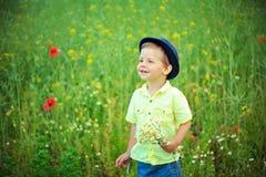 Walk on a meadow Stock Photo