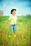 Walk on a meadow Royalty Free Stock Images