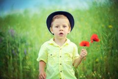 Walk on a meadow Royalty Free Stock Photo