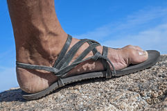 Walk in my sandals Royalty Free Stock Photo