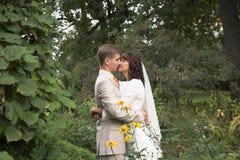 The walk of newlyweds Stock Photo