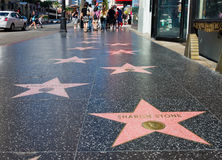Free Walk Of Fame Stock Photography - 21140712