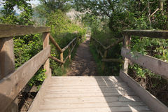 Walk over the bridge in the woods Royalty Free Stock Photography