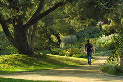 Walk in the park royalty free stock image