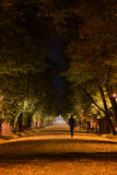A walk in the park during the autumn. A lonely person walks in the park in the middle of the night Royalty Free Stock Photos