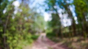 Walk in the Park on a clear day. Path in the Park on a clear day, the nature of Eastern Europe stock photography