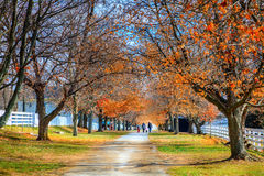 Walk in the park. A family is walking along the alley in Shaker Village of Pleasant Hill, Kentucky Royalty Free Stock Images