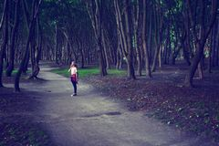 A walk in the Park. Girl dreams. Photo tinted Royalty Free Stock Image