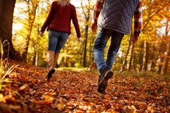 Walk through park- love, travel, relationship concept. Walk through park- love, travel, relationship and dating concept Royalty Free Stock Photography