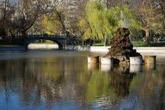 A walk in the Park. My neighborhood park Stock Photos