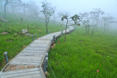 A walk in the park at Pa Hin Ngam national park, Thailand Stock Photo