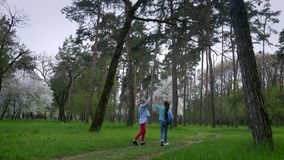 Walk in Park in springtime Two little Caucasian girlfriend with guitar in hand go on the forest path. concept of pure. Walk in the Park in springtime Two little stock video footage