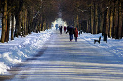 Walk in the park in a winter day Stock Photo