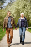 Walk in a park. Young couple taking a walk in a park in spring Royalty Free Stock Photos
