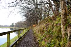 Walk path Stock Photos