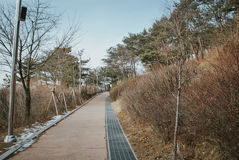 Walk path and beautiful Korea nature at hill top during winter Stock Images
