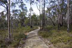Walk path at  Crooked Brook Western Australia in winter. Stock Photos